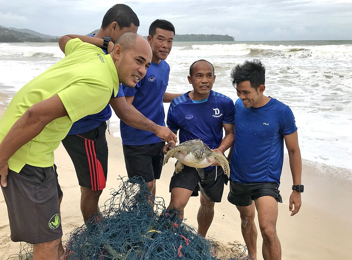 Three sea turtles washed up on Phuket beaches   The Thaiger