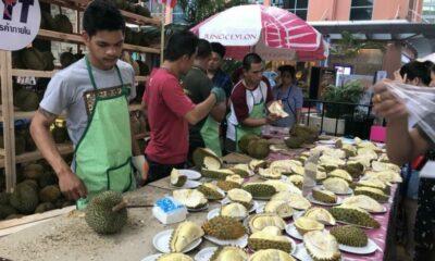 Thailand Amazing Durian and Fruit Fest @ Phuket จัดบุฟเฟ่ต์ทุเรียน 18 – 24 มิ.ย.นี้   The Thaiger