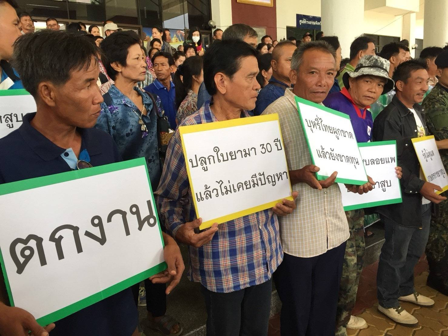 Tobacco farmers rally at Chiang Mai city hall | The Thaiger