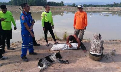 Songkhla: Pet dog leads family to missing boy | The Thaiger