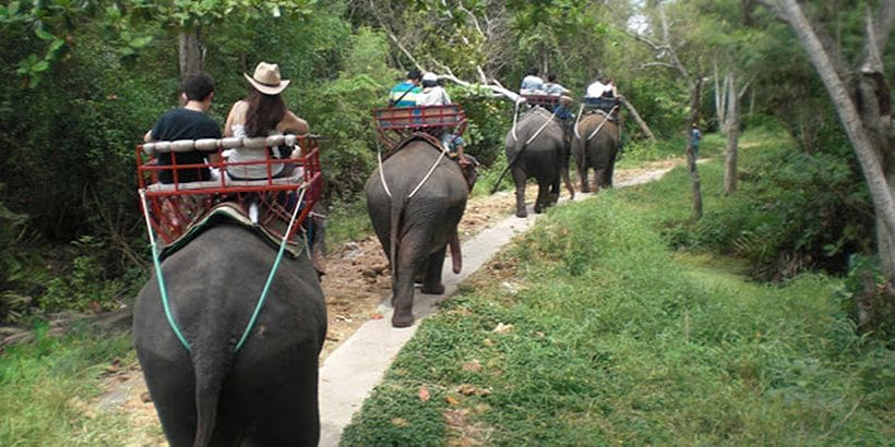 Top 10 things to avoid in Thailand | News by Thaiger