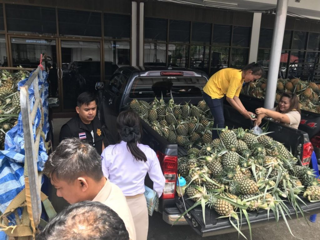 Pineapple farmers to sell crops in PTT stations nationwide | News by Thaiger