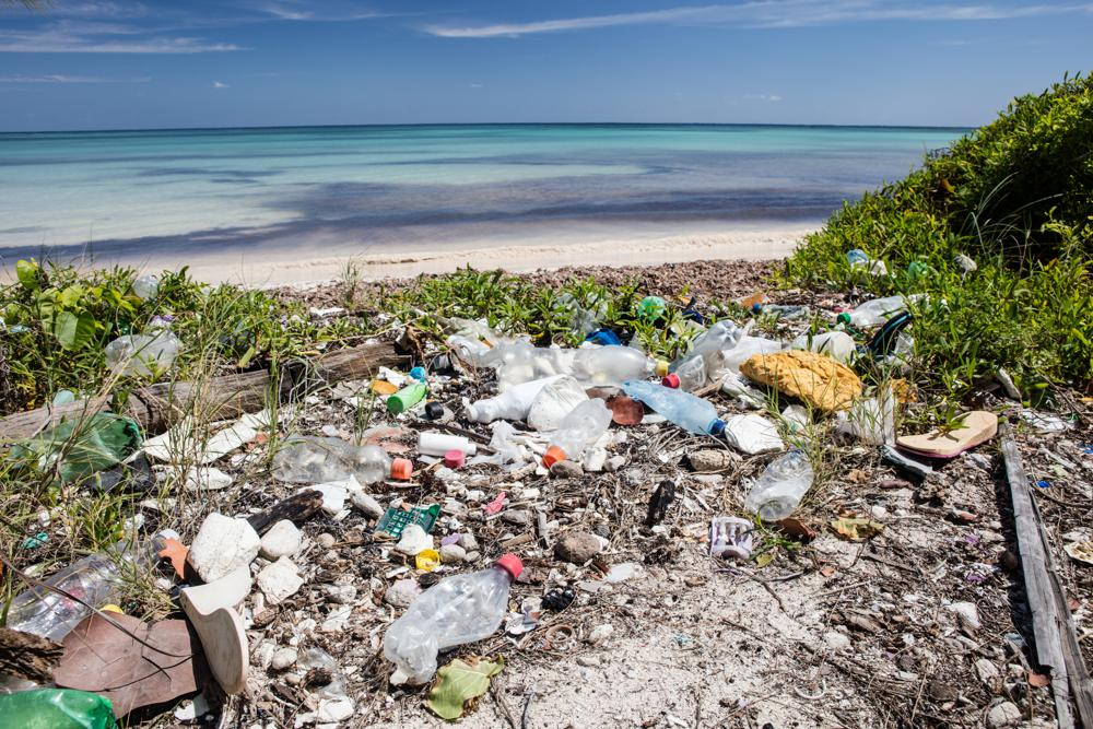 A 50 percent cut in plastic garbage in 9 years | Thaiger