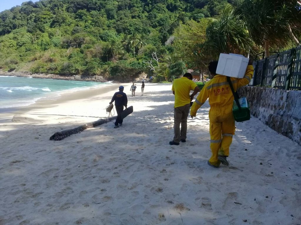 Crocodile hunters move to Paradise and Patong beaches | News by The Thaiger