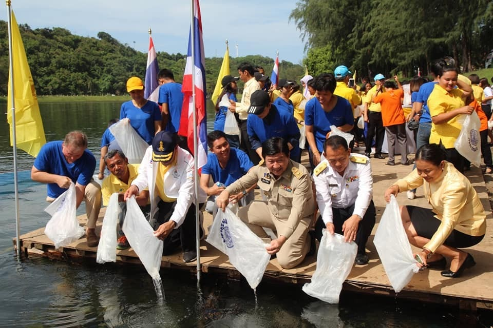 One million sea shrimp released to mark HM The King's birthday   News by Thaiger