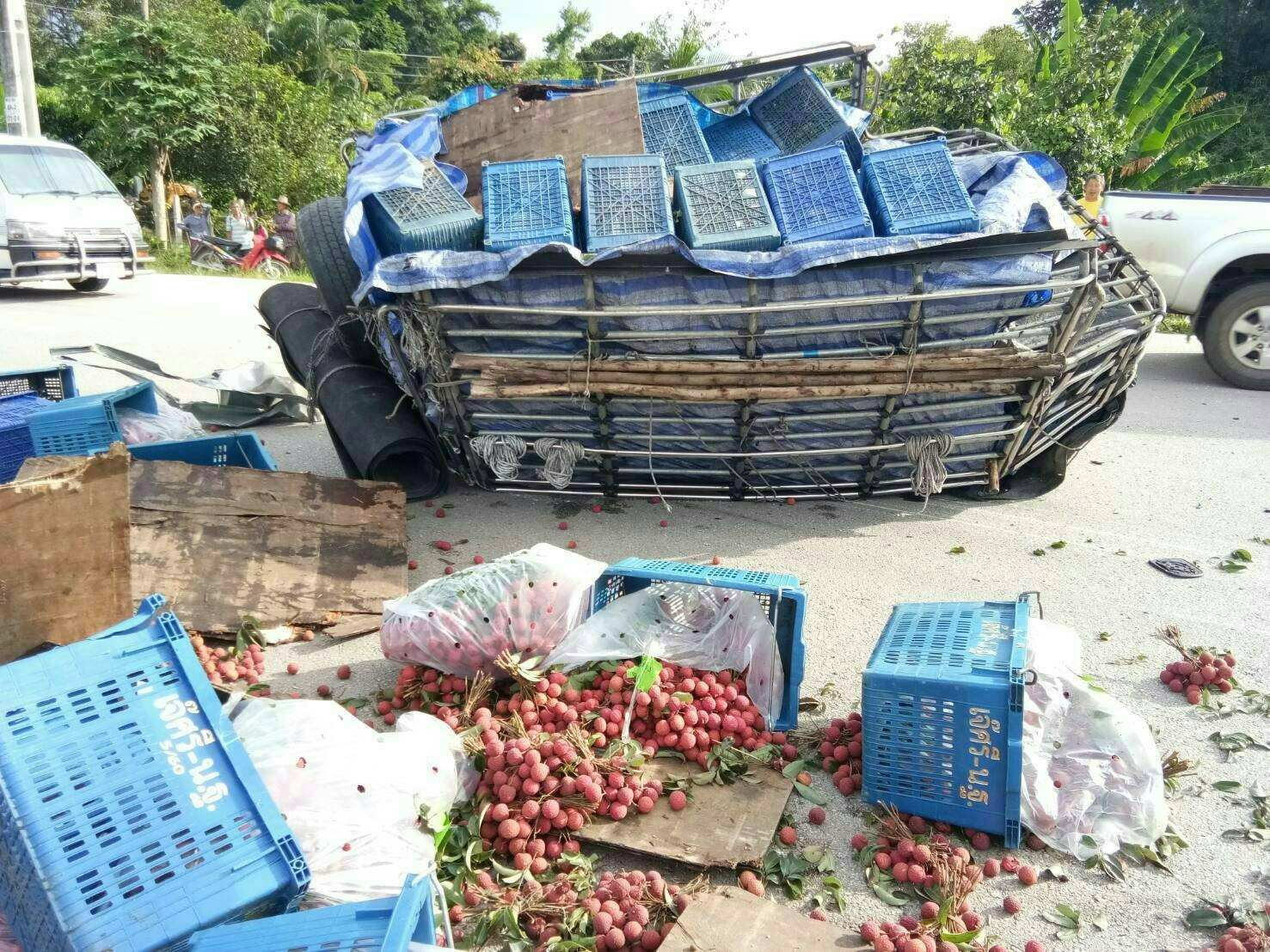 Chiang Mai: High speed crash results in a roadside lychee salad   The Thaiger
