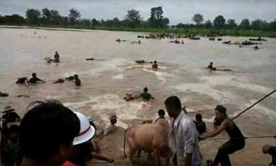 Rescuers search for 131 missing persons in Laos flooding | The Thaiger