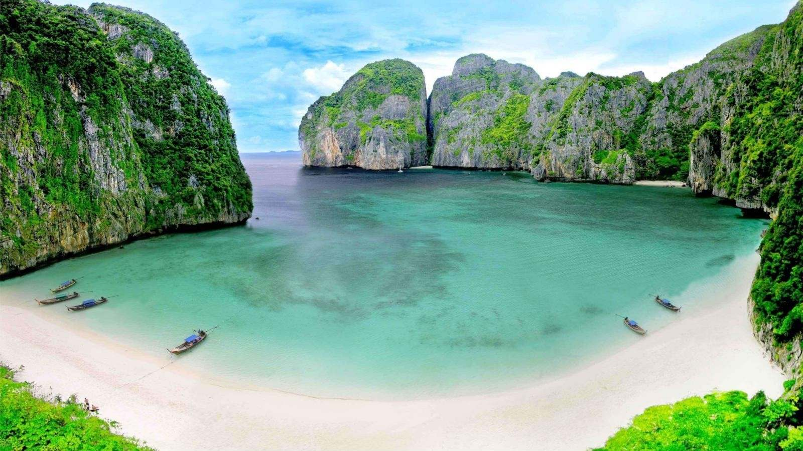 Coral planted in Maya Bay | The Thaiger