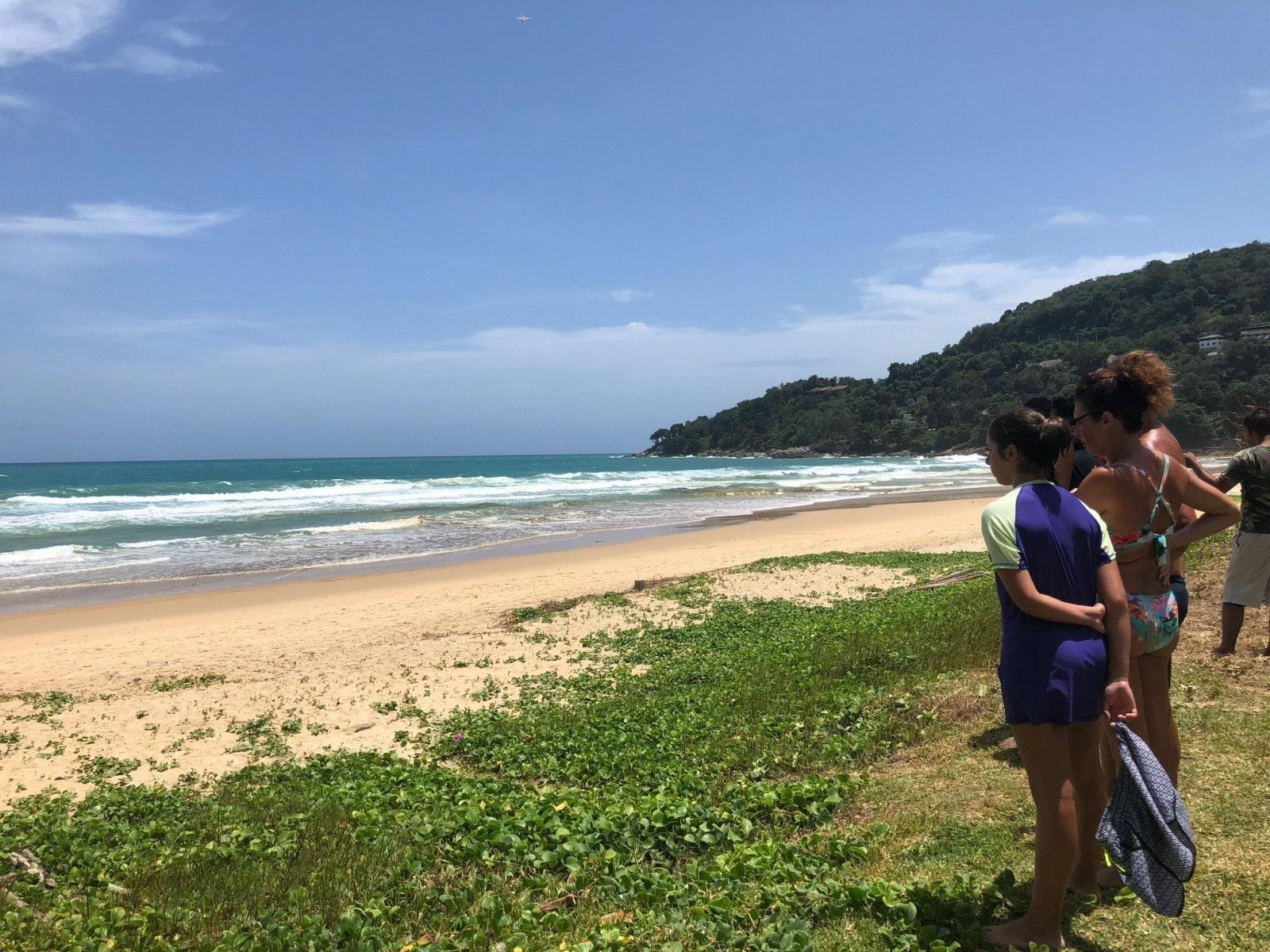 Search for Phuket's elusive reptile continues – Crocodile sightings off Karon Beach | The Thaiger