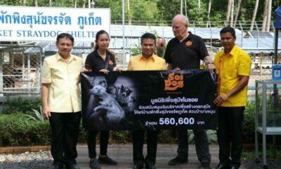 ซอยด๊อกบริจาคเงินครึ่งล้านช่วยเหลือบ้านพักพิงสุนัขจรจัด | The Thaiger