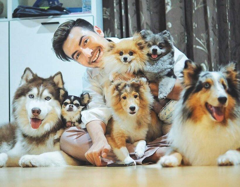 แช๊ะ เปลี่ยน ชีวิต งานประกวดภาพถ่ายสุนัขจรจัดที่น่ารักน่าเลี้ยง   The Thaiger