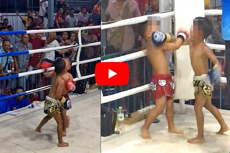 Muay Thai for five year olds – Sport or child abuse? | The Thaiger