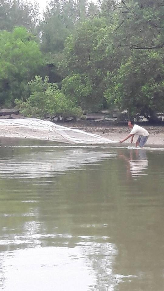 Tourists back on Mudong Canal after frantic clean-up | News by The Thaiger