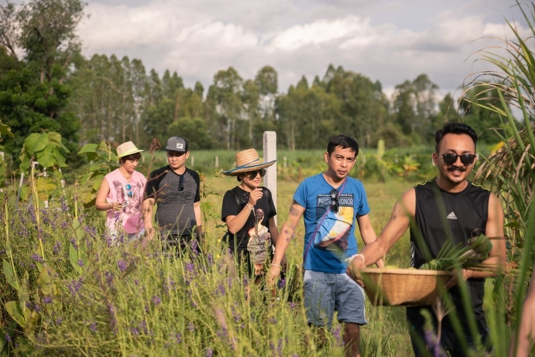 Mango Tree hosts educational tour to train global chefs in the art of Isan cuisine | The Thaiger