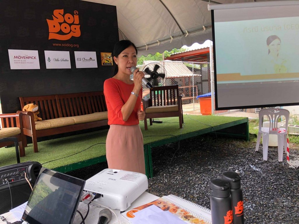 Soi Dog's 'Snap for Stray' underway | News by The Thaiger