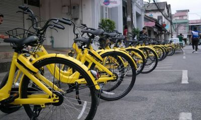 Oh no! No more Ofo. | The Thaiger