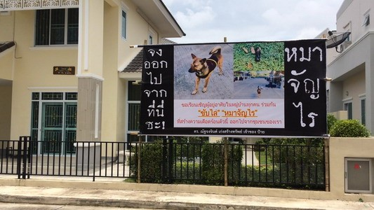 The dog's got to go! Mammoth vs Jao Bo.   News by The Thaiger