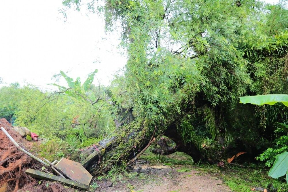 Floods and landslides in Phang Nga damage homes | News by The Thaiger