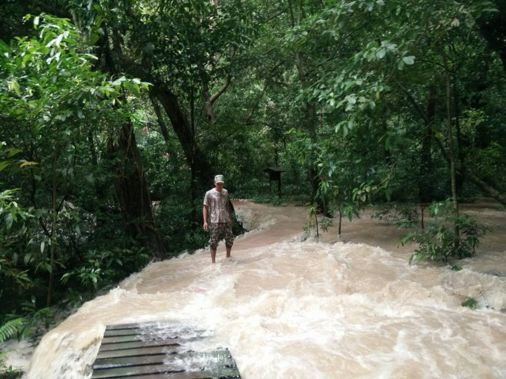 Parts of Krabi flooded as heavy rains continue | News by The Thaiger