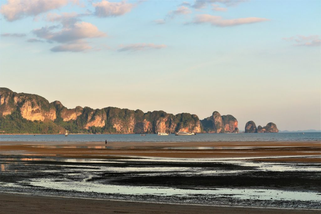 Millions of soldier crabs found on Krabi beach | News by The Thaiger