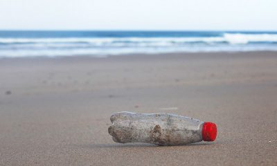 'Travel Thailand in Style, Reduce Plastic Waste' – TAT waste reduction program | The Thaiger