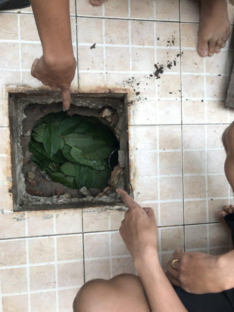 จับกุมผู้ต้องหาพร้อมยาบ้า ยาไอซ์ กัญชา และใบกระท่อม | News by The Thaiger