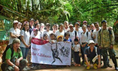 Mövenpick Resort & Spa Karon Beach adopts a gibbon from Phuket's Rehabilitation Centre | The Thaiger