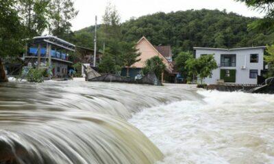 Resorts near Kaeng Krachan dam in Petchaburi temporarily closed | The Thaiger