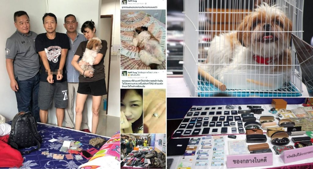 Cute dogs and a friendly smile - recipe for a 15 year scam | News by The Thaiger