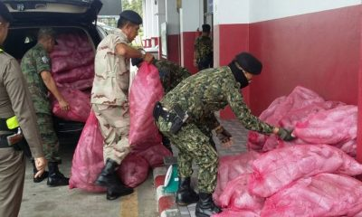 780kg of kratom seized at Phuket Checkpoint in separate incidents | The Thaiger