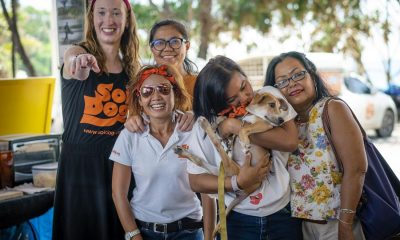 A 'pawsome' Sunday with Surf for Soi Dog at SurfHouse Kata Beach | The Thaiger