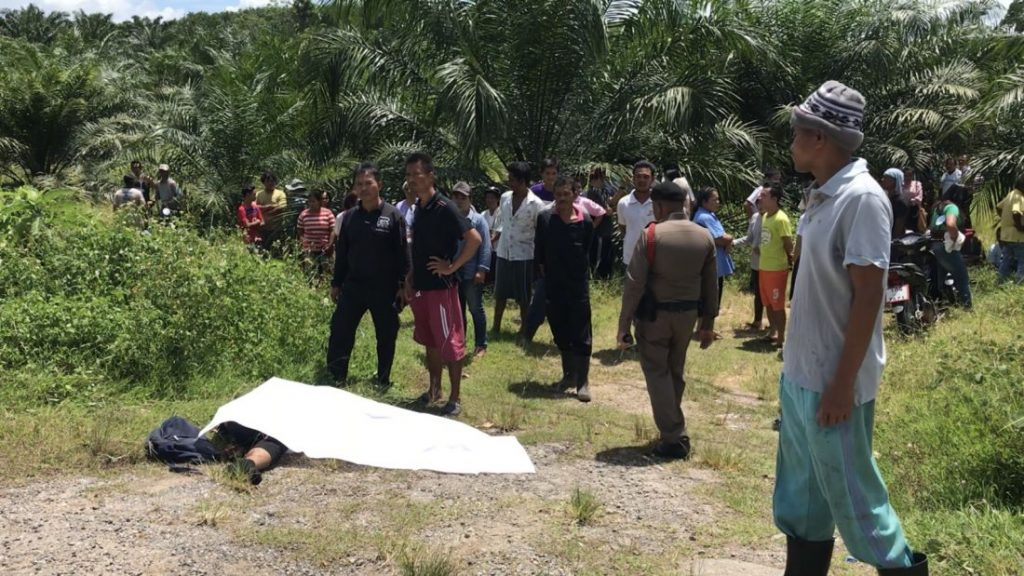 Two college students killed in Krabi head-on | News by The Thaiger