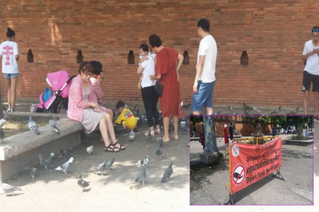 Chinese tourists ignoring the PM's orders   News by The Thaiger