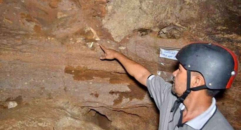 700,000 year old fossils found in Krabi cave | The Thaiger