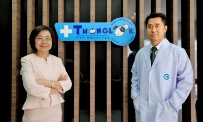 Thonglor Pet Hospital enters Phuket market | The Thaiger