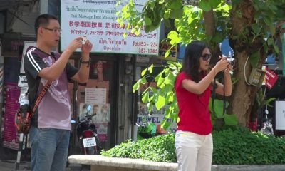 Chinese arrivals down by half in Chiang Mai | The Thaiger