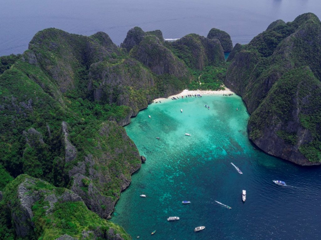 Maya Bay's long road to recovery | News by The Thaiger
