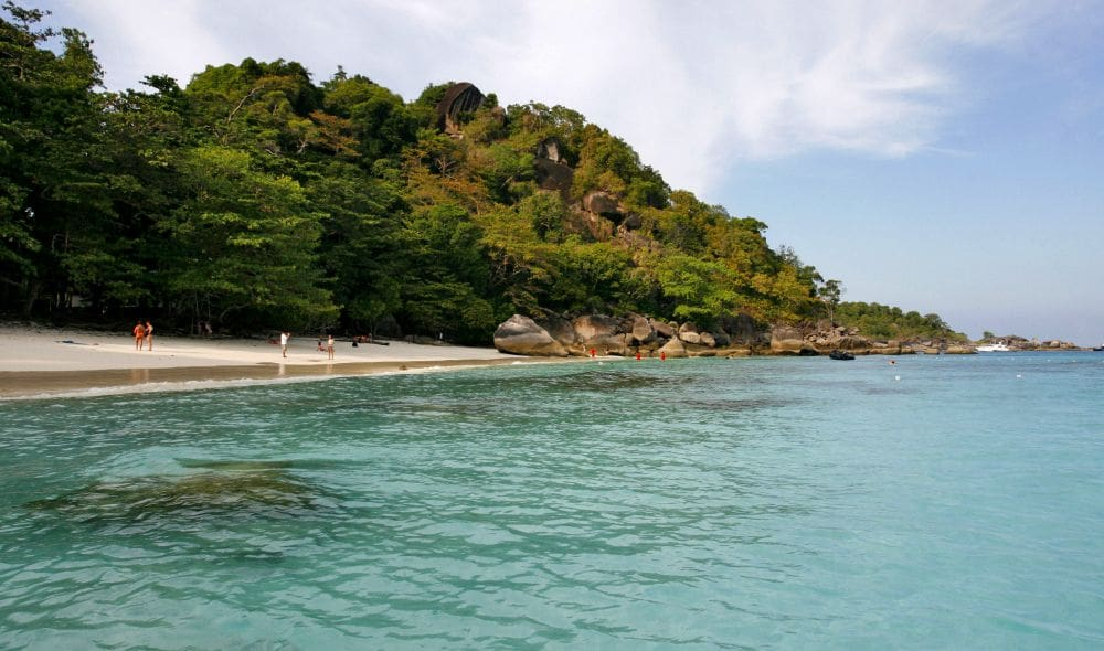 Similans re-open with tight new restrictions | The Thaiger