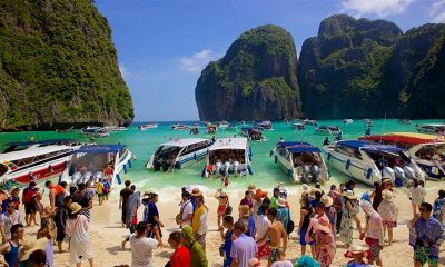 Maya Bay's long road to recovery | The Thaiger