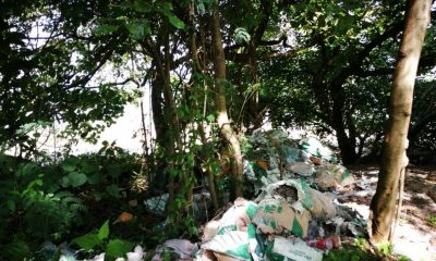 Village leaders try to track down rubbish dumpers | The Thaiger