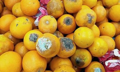 Don't complain about the oranges. Market customer shot after complaint. | The Thaiger
