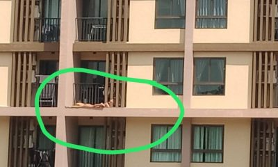 Pic of female sunbather on Phuket balcony goes viral in social media | The Thaiger