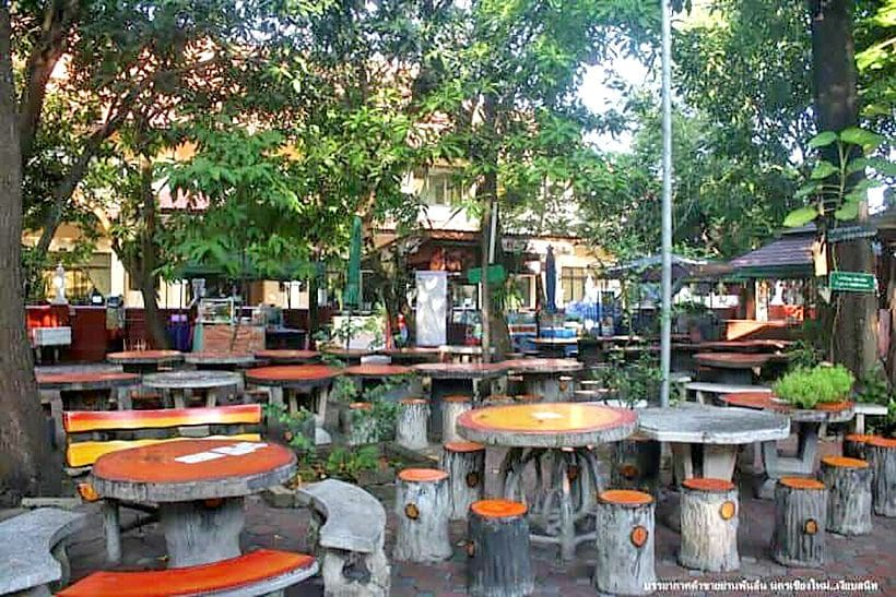 Chiang Mai tourism operators paint gloomy outlook   The Thaiger