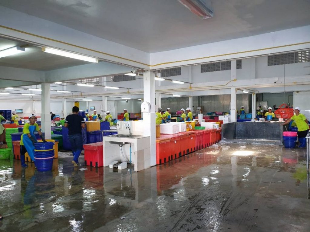 Illegal seafood processing factory raided in Rassada, manager arrested | News by The Thaiger