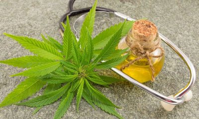 """Government is to allow people to use """"legal"""" parts of cannabis in business 