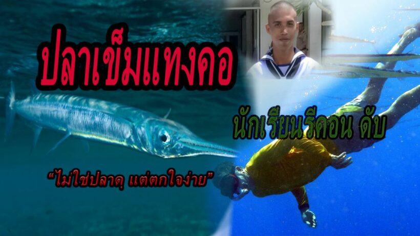 รายแรกในไทย นักเรียนรีคอนถูกปลาเข็มพุ่งแทงคอเสียชีวิตขณะฝึก | The Thaiger