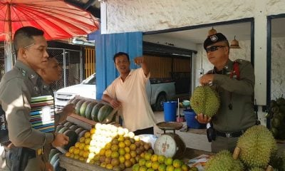 Krabi Police tracking down durian thief | The Thaiger