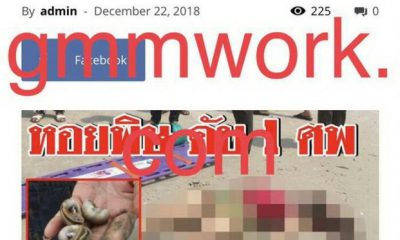 Fisheries Department warns of fake news that a woman died from shells in Phuket | The Thaiger