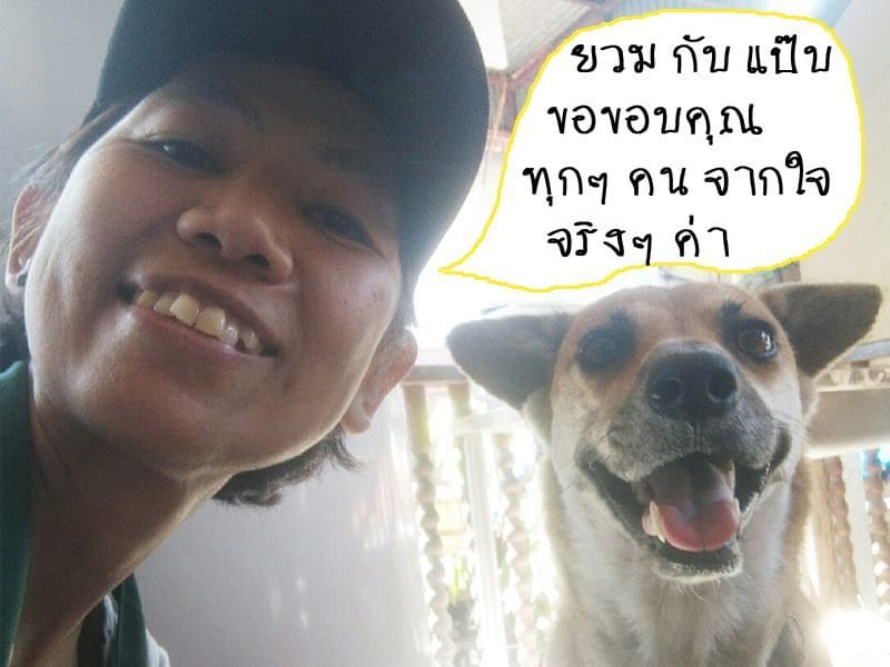Social media helps re-unite dog and owner in Chiang Mai | News by The Thaiger