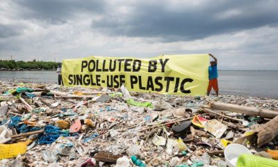 """Plastic, the Material that Binds the Planet"" – Talk in Phuket 